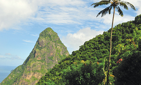A Windward Islands yacht charter will allow you to discover tropical rainforests and volcanic craters