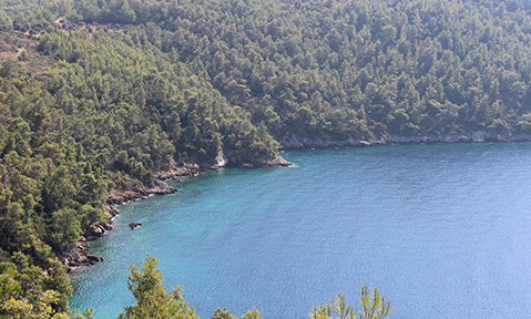 A Bay of Ekincik yacht charter introduces you to Turkey's pine-clad mountains and azure waters