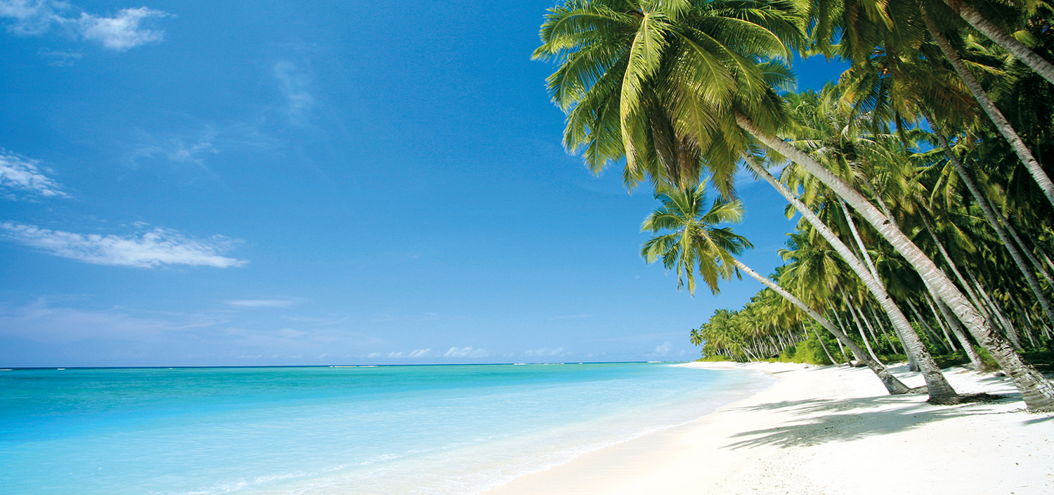 Calm blue waters and a palm-fringed beach on a Fiji yacht charter
