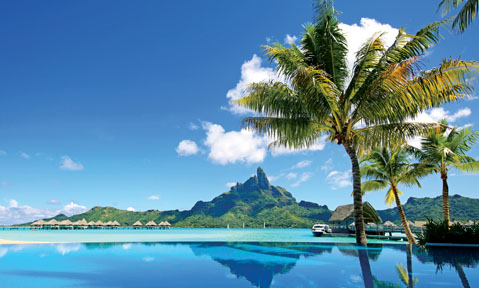 Blue ocean and palm trees are a common part of the scenery on a Tahiti yacht charter