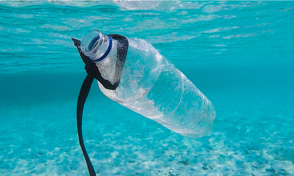 9 Tips to Reduce Plastic Pollution in Ocean